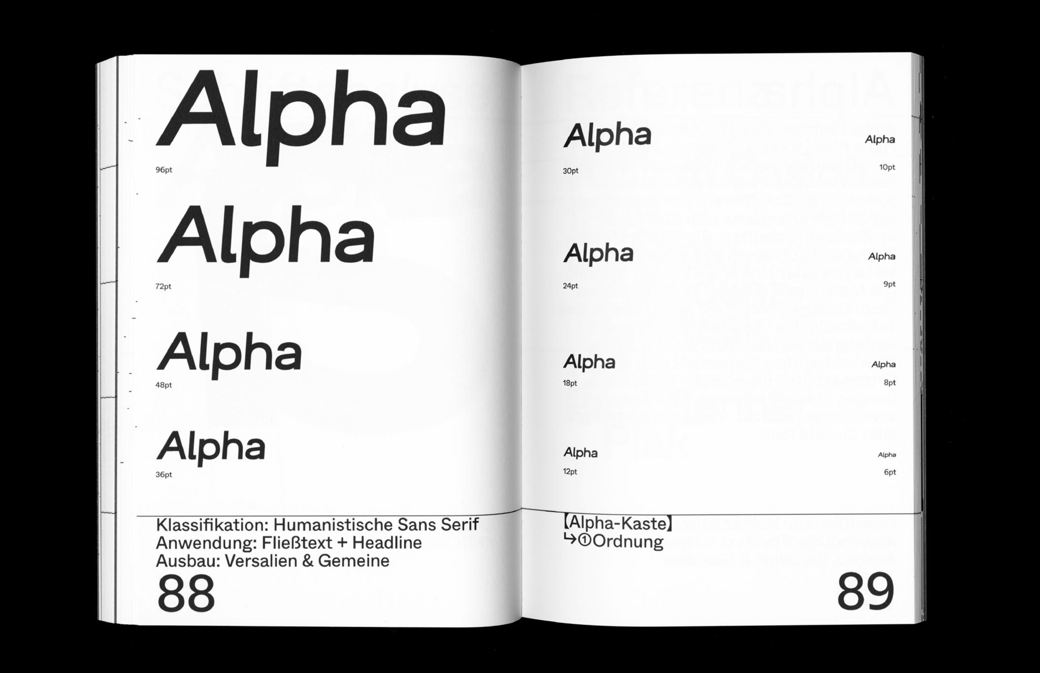 Alpha Epsilon Alpha Font Testing