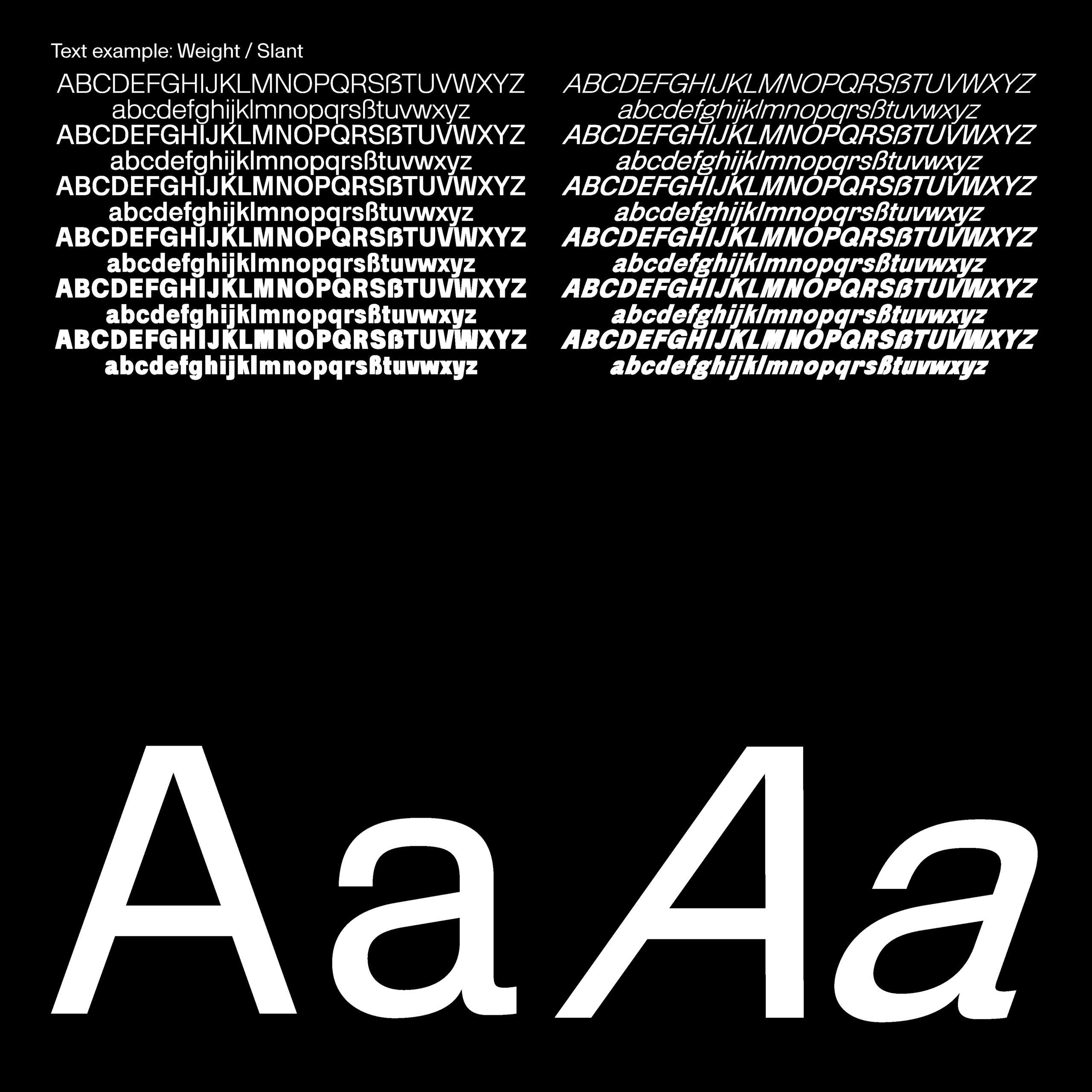 Daniel_Stuhlpfarrer_Spekulative-Schriftgestaltung-Speculative-Type-Design_WEB-new