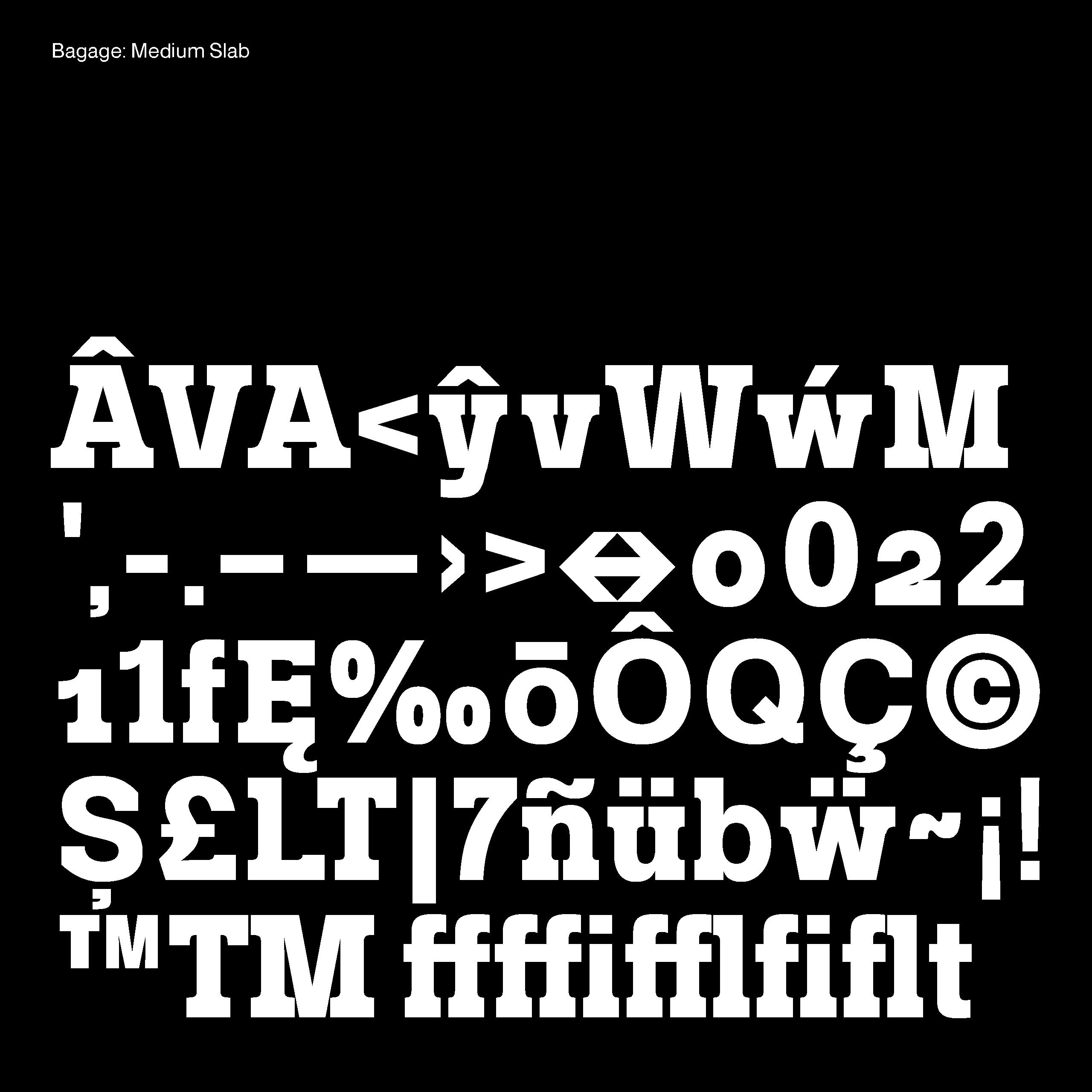 Daniel_Stuhlpfarrer_Spekulative-Schriftgestaltung-Speculative-Type-Design_WEB28
